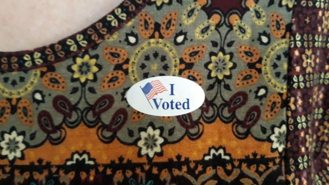 I Voted 2019.jpg